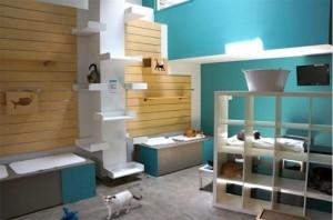 Modernized Shelter
